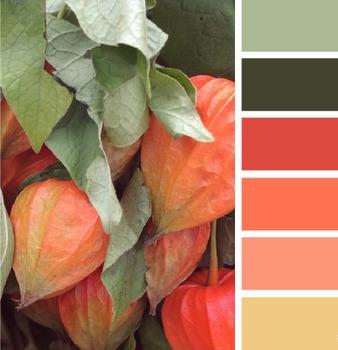 Free | Digital Paper #15 | Autumn Hues
