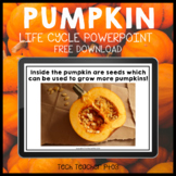 Free Download Pumpkin Life Cycle PowerPoint Slide Show