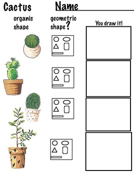 Free Drawing - Cactus, Line and Shape