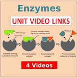 Enzymes Video Unit LINKS