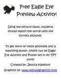 Free Eagle Eye Activity Preview