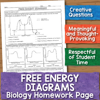 Free Energy Diagrams Biology Homework Worksheet