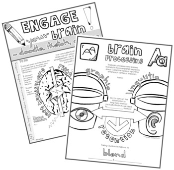 """Free """"Engage Your Brain """"Doodle Notes"""