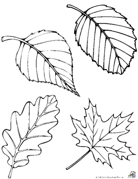 Free Fall Leaf Patterns by C and L Curriculum | Teachers ...