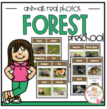 Free Forest Animals Real Photos