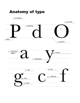 Type Anatomy - Handout & Quiz