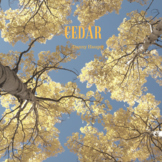 """Cedar"" Free Instrumental Music Teachers Grading Papers Wo"