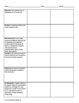 Free Macromolecules Vocabulary Practice Packet