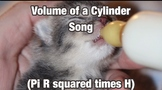 Free Math Song: Volume of a Cylinder (Formula)