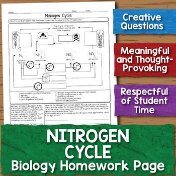 Free Nitrogen Cycle Biology Homework Worksheet by Science