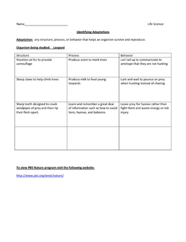 Free PBS Video Worksheet - Identifying Adaptations