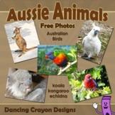 Photos of Australian Animals and Birds | Wildlife of Australia