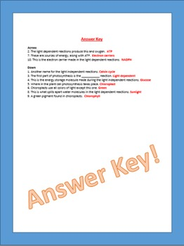Free Photosynthesis Vocabulary Review Crossword Game