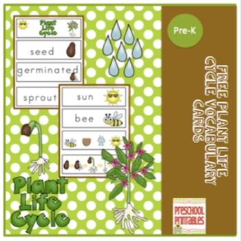 Free Plant Life Cycle Vocabulary Cards