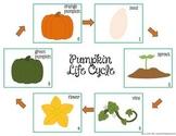 Free Pumpkin Life Cycle
