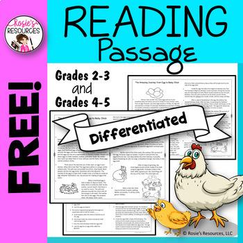 Free Reading Comprehension Passage 4th grade, 3rd grade, 5th grade