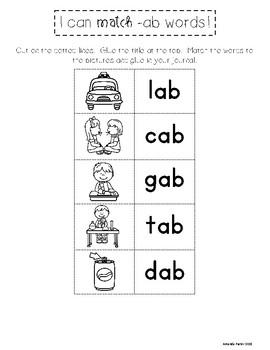 Free Sample!  CVC Word Families: No Prep Interactive Notebook Activities