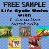 Free Sample Life Cycle Units - Butterfly, Chicken, Plant, Frog, & Insect
