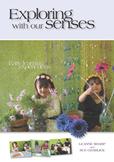 Free Sample of Kindergarten Sensory Play Ideas