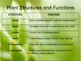 Science Powerpoint - Plant Structure and Function