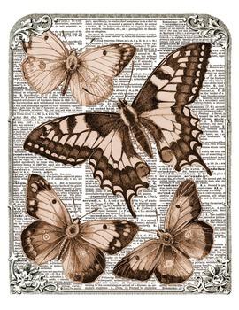 Free Scrapbooking Background – Framed Vintage Butterflies