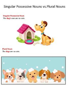 Singular Possessive Nouns vs. Plural Nouns