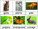 Free Spanish Language 3-Part Cards