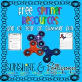 Fidget Spinner Math Graphing and Persuasive Writing Activities FREE