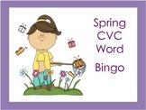 Free Spring CVC Word Bingo