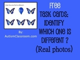 free task bins for autism pdf