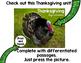 Free Thanksgiving Worksheet
