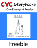 Freebie - 1 Emergent Reader ~ SET 3.1 Book 1 ~  BAGS