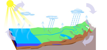 Free Water Cycle Diagram (Blank & Labeled) by Midwest ...