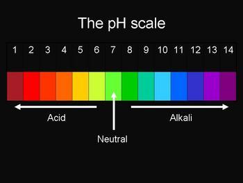 Free acids and alkalis presentation