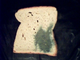 Free bread pictures in VIS and NIR spectral range JPG