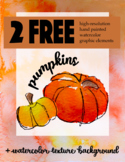 Free high resolution hand painted pumpkin PNG graphic