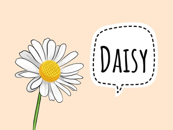 Free pack- Flowers vocabulary