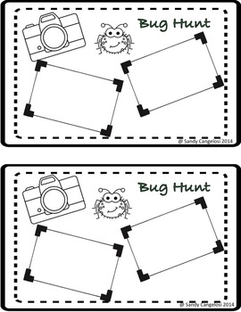 BUG HUNT OBSERVATION ACTIVITY