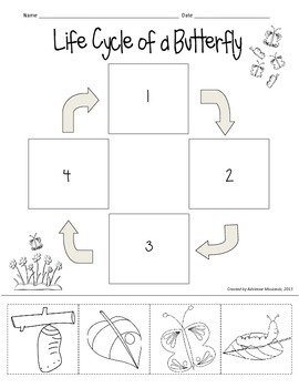 Life Cycle Of Butterfly Worksheet Les Baux De Provence