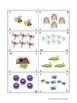 PK.CC.1. ~ Counting and Identifying Numbers 1-10 (Bugs and