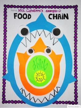 Freebie! Food Chain Craftivity {science}