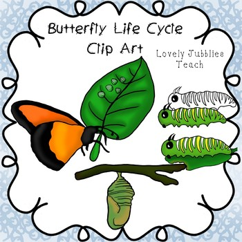 Freebie Friday 8: Butterfly Life Cycle Clip Art