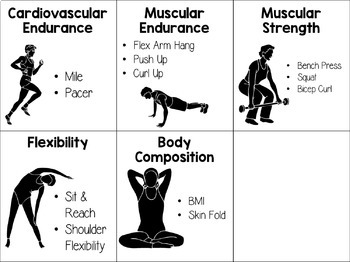 Freebie Health Related Fitness Component Task By The