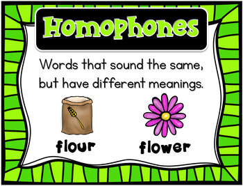 Homerun Homophones Vocabulary Cards, Puzzles and Practice Pages
