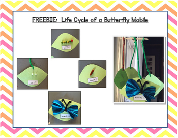 Lifecycle of a Butterfly Mobile Freebie