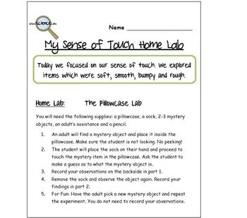 Freebie! My Sense of Touch Lab Experiments