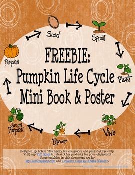 Freebie: Pumpkin Life Cycle Mini Book & Poster