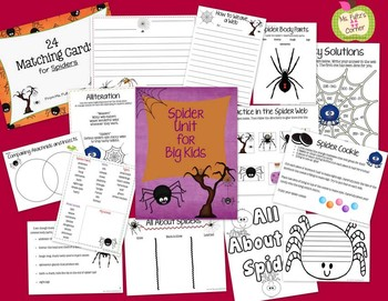 Freebie Spider Coloring Sheet