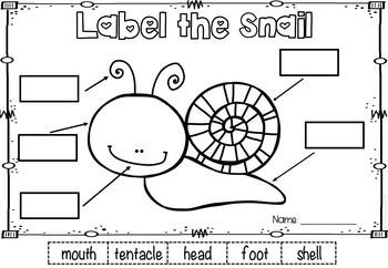 Spring Theme Labeling - Freebie