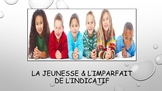 French 2 Unit- Youth and Imperfect Tense with Child Book Project